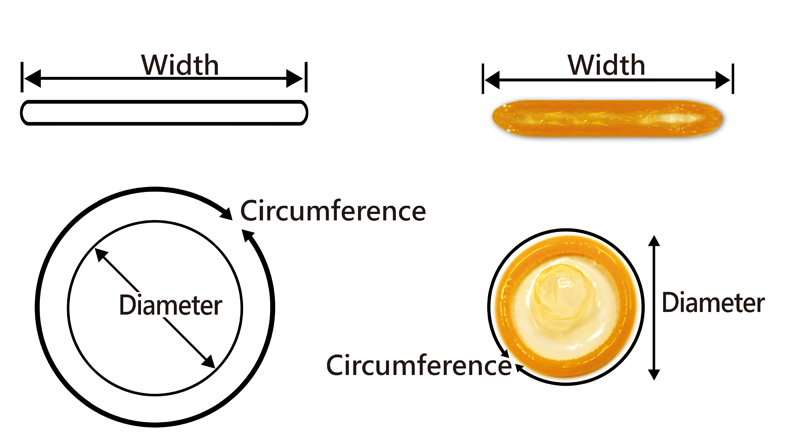 dimensiunea și grosimea normală a penisului